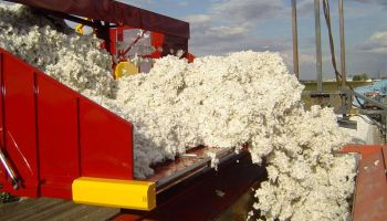 Cotton Equipment